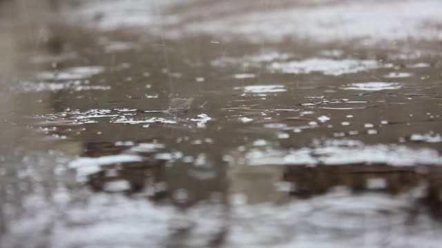 Rain puddle background video