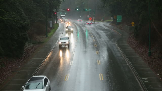 Rain Storm, Stanley Park, Vancouver video