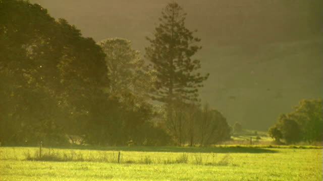 Rain Sun Shower Clears Revealing Rural Scene video