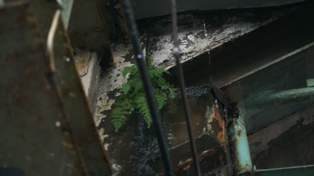 Rain Water Dripping in Warehouse video