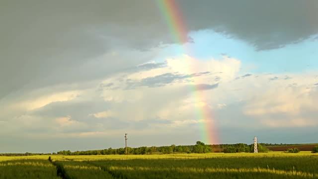 田舎の農地の小麦畑の上の虹 - レインボー点の映像素材/bロール