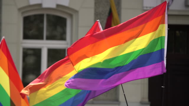 Rainbow flag supporting LGBT community on gay parade event. Colourful flag in the crowd during gay pride celebration Rainbow flag supporting LGBT community on gay parade event. Colourful flag in the crowd during gay pride celebration. pride stock videos & royalty-free footage