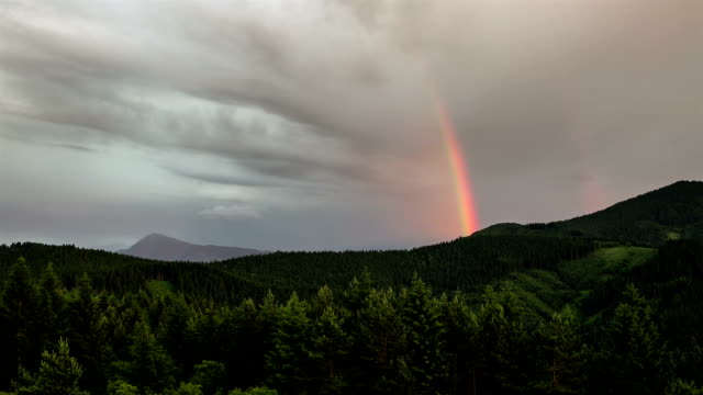 Rainbow over forest time lapse. Sky after rain video