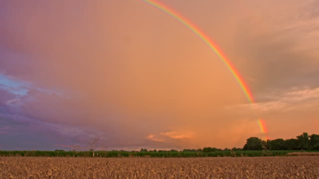 WS DS Rainbow Over The Fields video