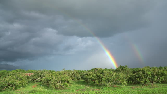 Rainbow Landscape of the rainbow in the rain have rice field foreground. rainbow stock videos & royalty-free footage