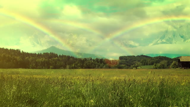 Rainbows over the meadow video