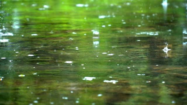 vídeos y material grabado en eventos de stock de gota de lluvia slomo en estanque poco profundo - charca