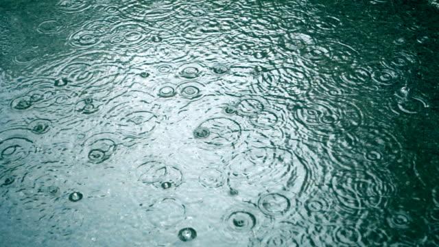 vídeos de stock e filmes b-roll de raindrop - poça