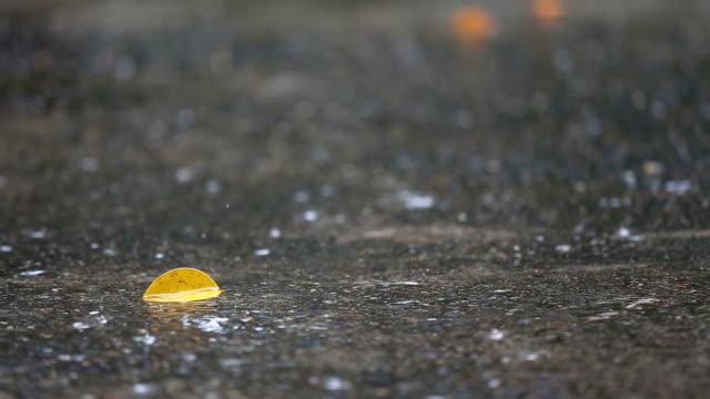 Raindrops Falling On floor. video