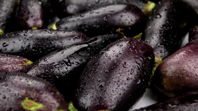 Gouttes de pluie tombant sur des aubergines rotatives. Gros plan. - Vidéo