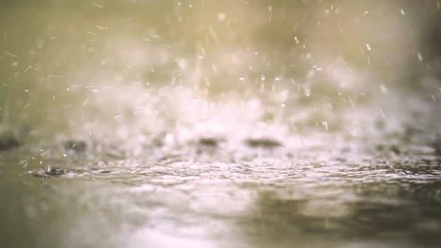 ağır çekimde yağmur damlaları - islak stok videoları ve detay görüntü çekimi