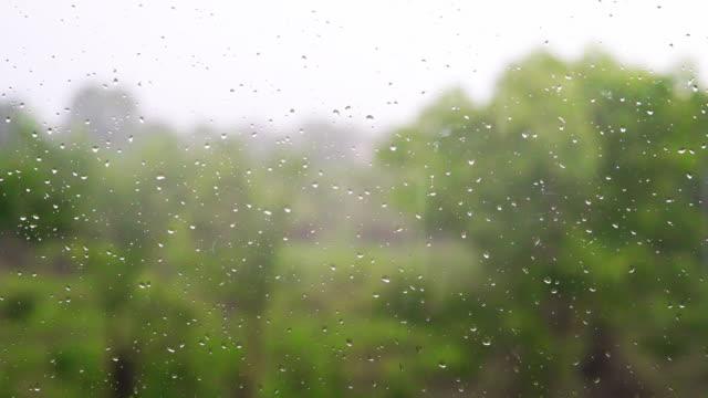 Raindrops on the window on a rainy day.