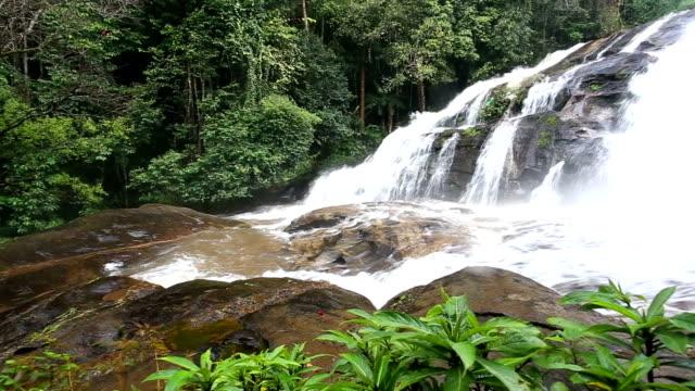 regenwald waterfal, chiang mai, thailand. - gold waschen stock-videos und b-roll-filmmaterial