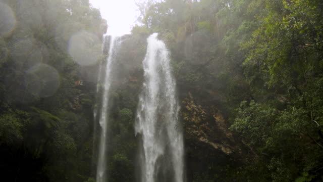 大雨の後の熱帯雨林の滝 - 生態系点の映像素材/bロール