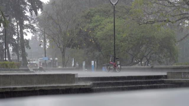 Raining in city park. video