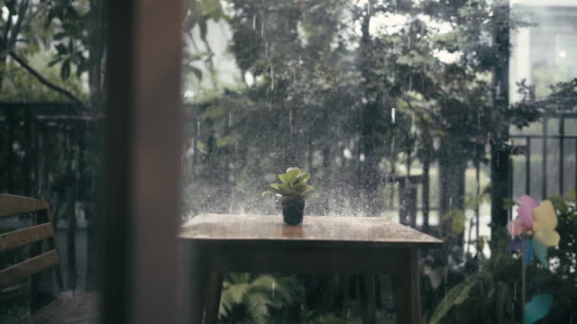 Raining in front of the house video