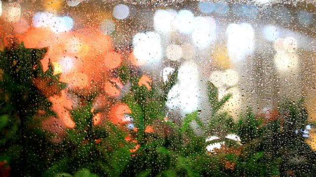 雨の夜 - 後方点の映像素材/bロール
