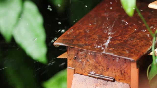 Raining on red mailbox
