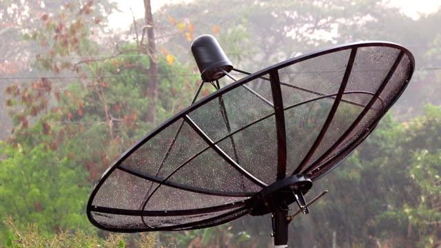 pioggia su antenna parabolica - telecomando background video stock e b–roll
