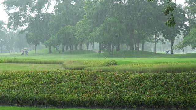 ゴルフ場のグリーンに落ちる水滴は雨。 - ゴルフ点の映像素材/bロール