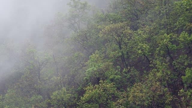 rainy cloud over mountain video