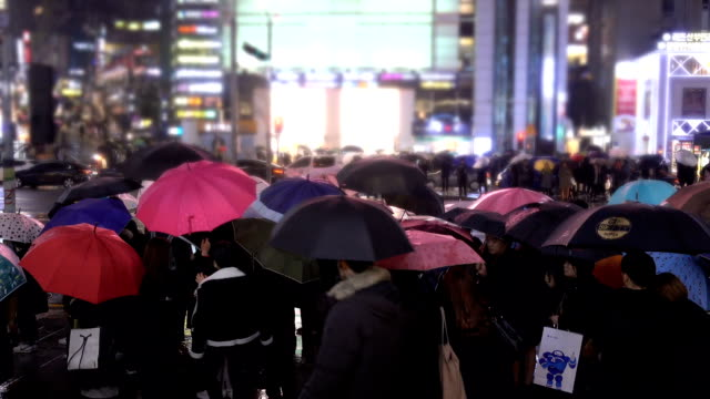 Rainy Day At Gangnam Street, South Korea Umbrella, Crowd, South Korea, Street, Rain, Walk, City, Crossing, Commute, Crowd, Night south korea stock videos & royalty-free footage