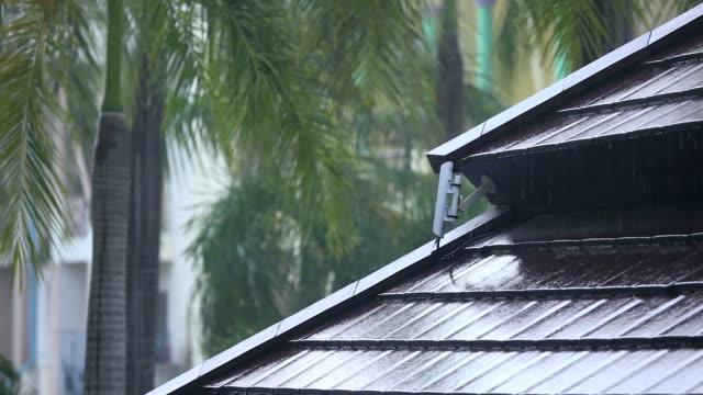 Rainy day video