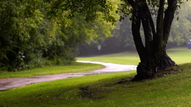 vídeos de stock e filmes b-roll de rainy days in toronto park - parque público