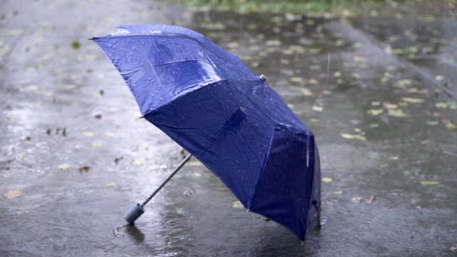 katta mavi şemsiye ile 4k yağmurlu sezon - islak stok videoları ve detay görüntü çekimi