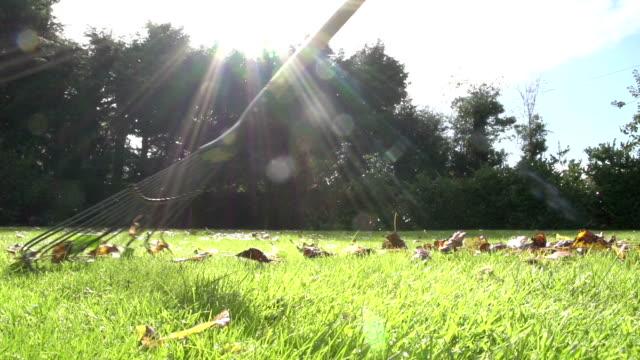 Raking The Leaves In Autumn video