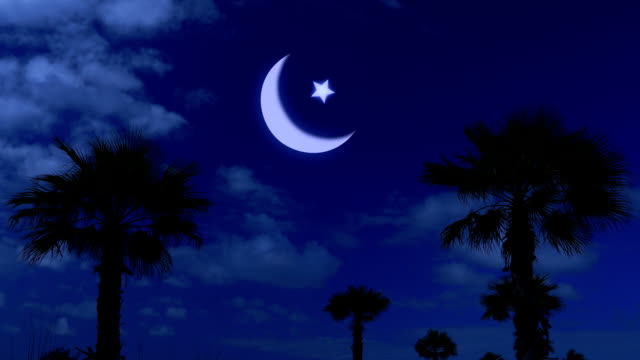 ramadan kareem night and moonlight among the palm fronds - eid mubarak stock videos and b-roll footage