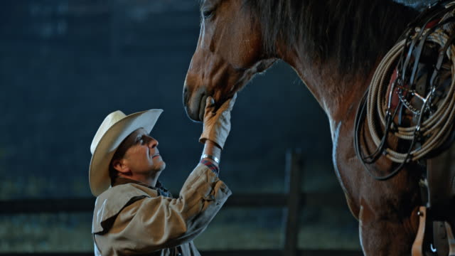 slo mo tu rancher kneeling in front of his horse - rancher video stock e b–roll