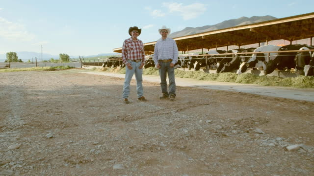 Ranchers on a Dairy Farm Ranchers standing on a dairy farm in Utah, USA. rancher stock videos & royalty-free footage
