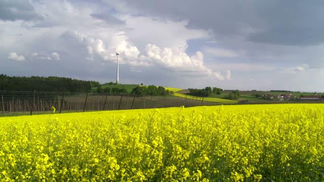 Vergewaltigung Feld vor dem Wind Turbine – Video
