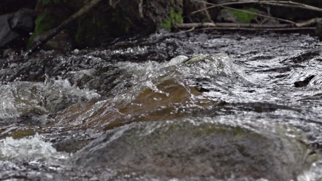 SLOW MOTION: Rapid Slow motion of splashing water in a river rapid. 笹 stock videos & royalty-free footage