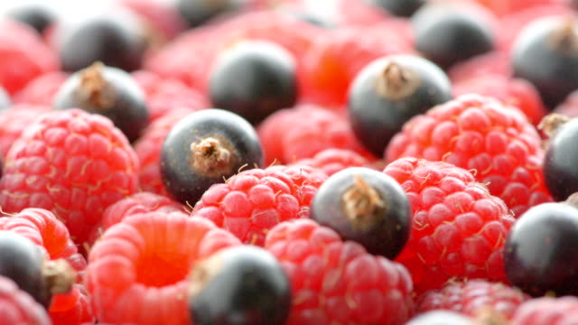 raspberry and black currant, close up video