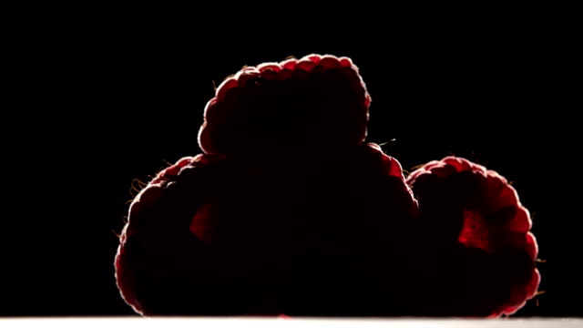 Raspberry fruit is revolve on a black background. Silhouette. Close up video