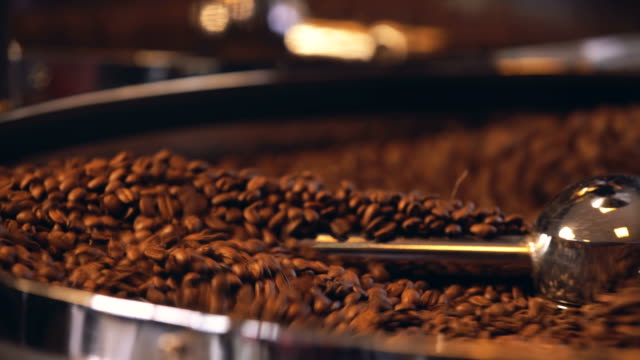 Raw coffee bean stiring - video