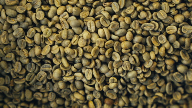 rohe kaffeebohnen - rohe kaffeebohne stock-videos und b-roll-filmmaterial