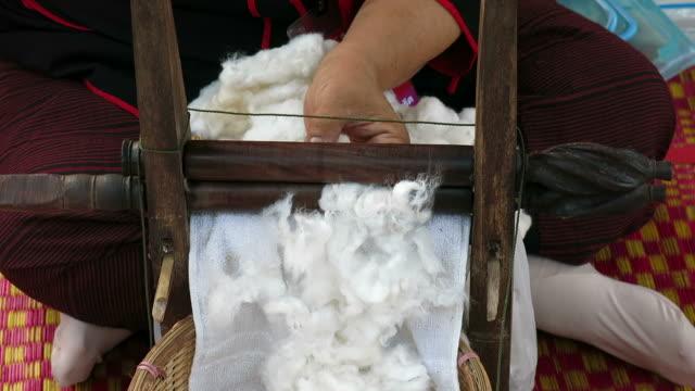 raw cotton - cotton growing bildbanksvideor och videomaterial från bakom kulisserna