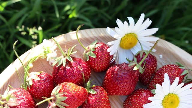 Raw fresh real organic strawberries move in a circle on garden background video