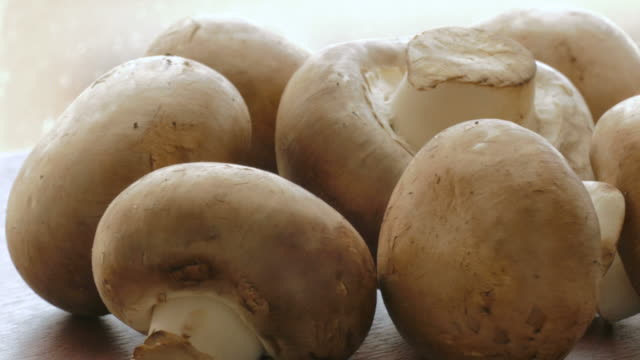 Raw champignons video