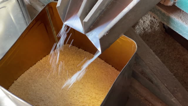 Raw Rice Produce Video 4k with stabilization: produce of raw rice with rice mill rice cereal plant stock videos & royalty-free footage