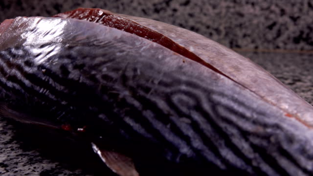 Raw tuna fish is cut on the fillet with knife on a grey stone table Close up of raw tuna fish is cut on the fillet with knife on a grey stone table tuna seafood stock videos & royalty-free footage