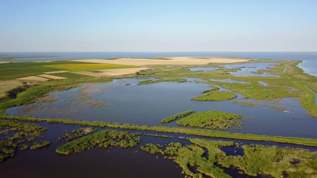 Razim-Sinoe lagoon located in the south part of the Danube Delta, stunning aerial view video
