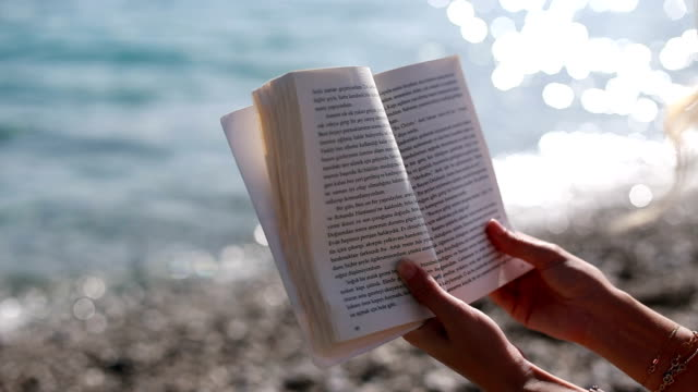 Reading A Book On The Beach video