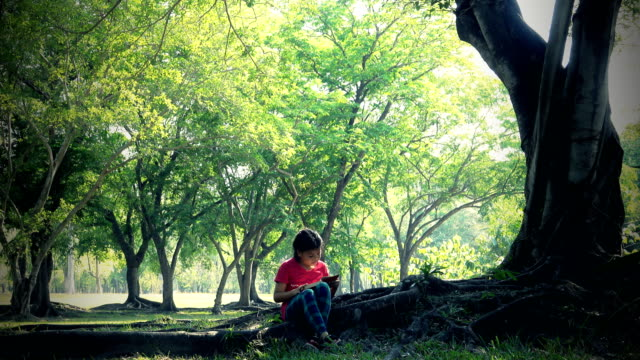 reading in park - solo una bambina femmina video stock e b–roll
