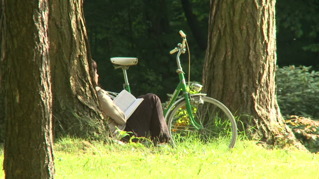 HD: Reading In The Park HD1080p: Woman is sitting by a tree in the park and reading a book. leaning stock videos & royalty-free footage