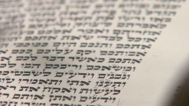 Reading Torah Detail video