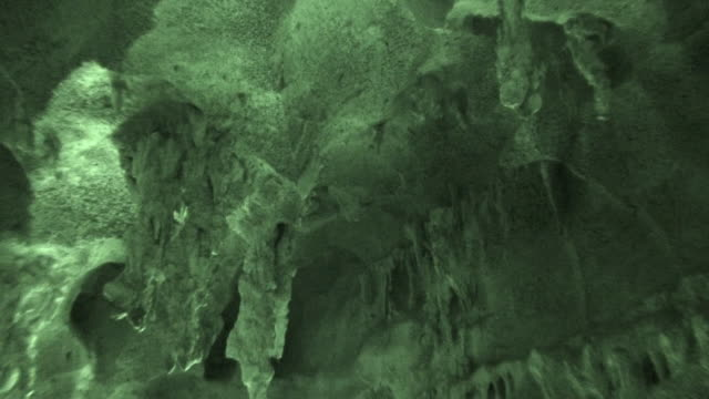 Real Bat Cave HD in night vision video